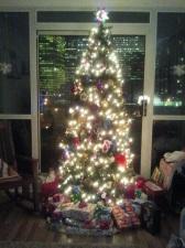 D.C.'s Christmas Tree