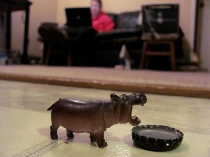 D.C. wants a house hippo
