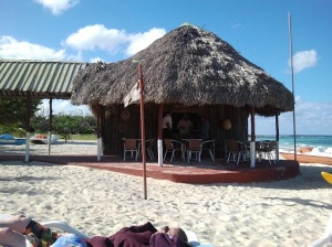 Beach Bars Give Your Beer