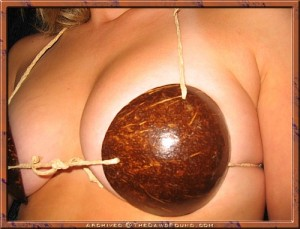 coconut shell bra