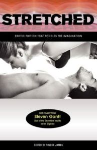 Stretched: Erotic Fiction that Fondles the Imagination